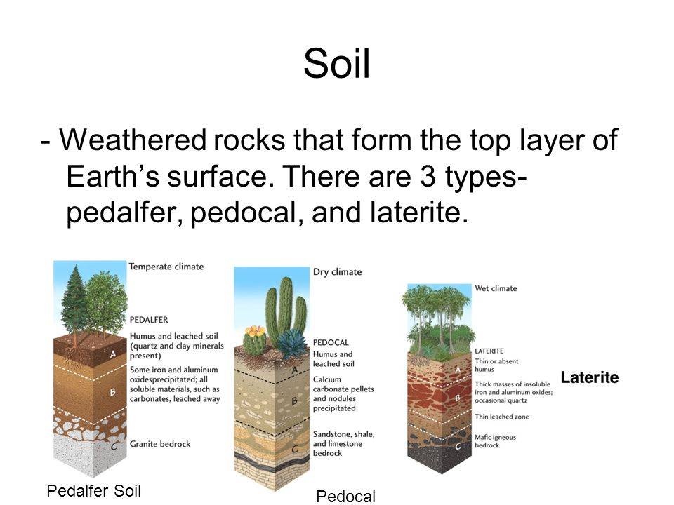 Soil - Weathered rocks that form the top layer of Earth's surface.
