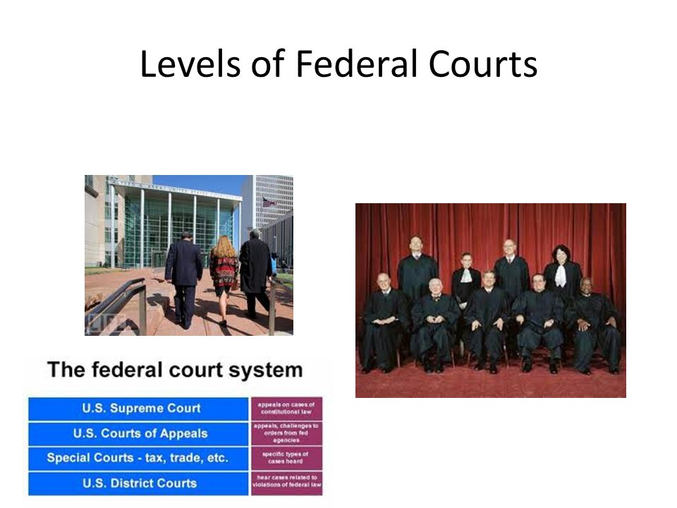 Levels of Federal Courts