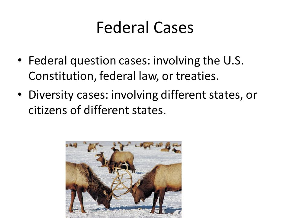 Federal Cases Federal question cases: involving the U.S.