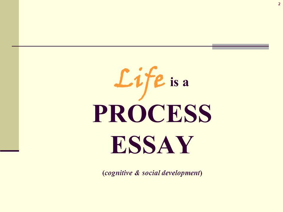 Process Essay  Life Is A Process Essay Cognitive  Social    Life Is A Process Essay Cognitive  Social Development