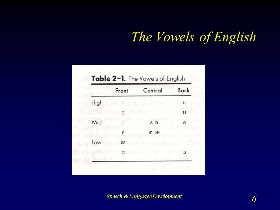 Speech & Language Development 6 The Vowels of English