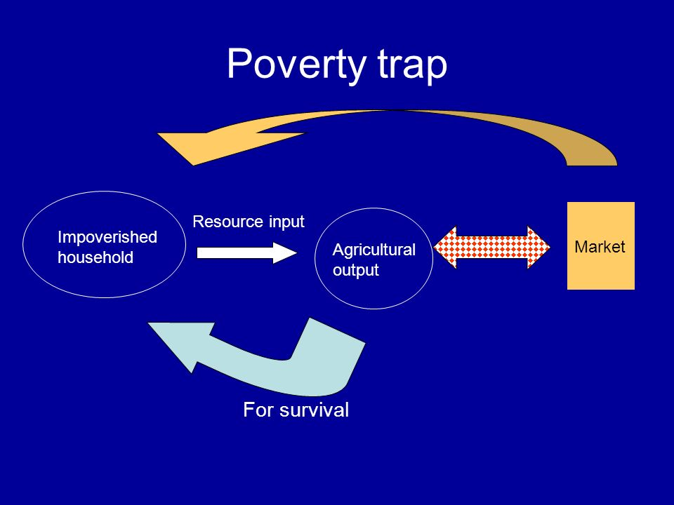 Poverty trap Impoverished household Resource input Agricultural output For survival Market