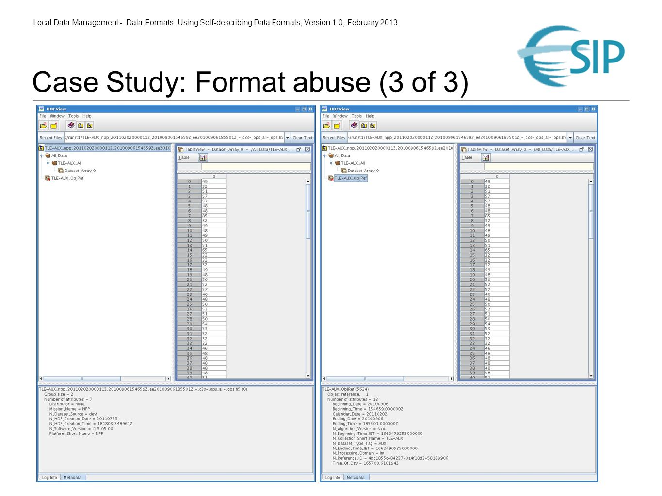 Local Data Management - Data Formats: Using Self-describing Data Formats; Version 1.0, February 2013 Case Study: Format abuse (3 of 3)