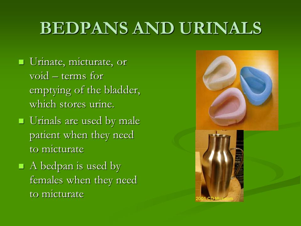 BEDPANS AND URINALS Urinate, micturate, or void – terms for emptying of the bladder, which stores urine.
