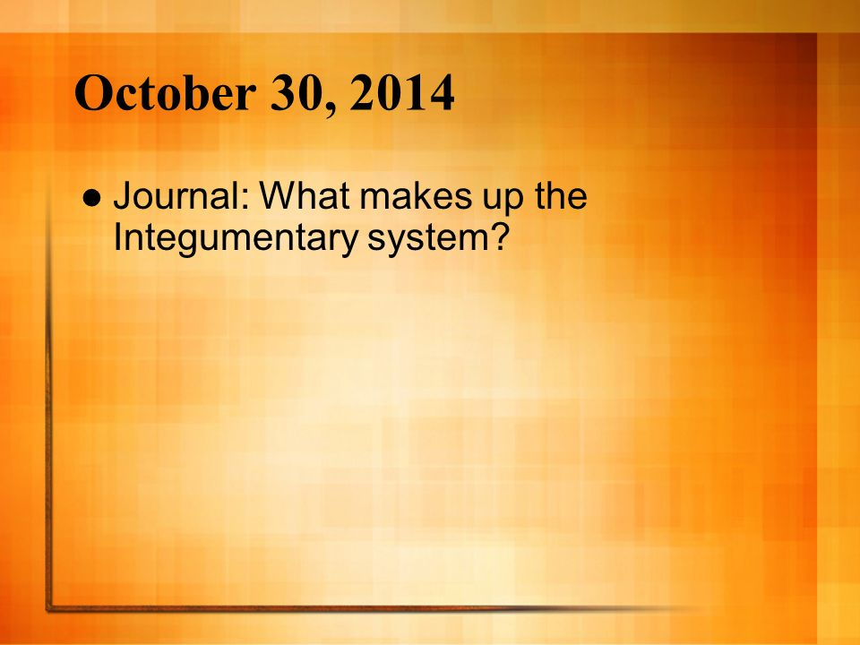 October 30, 2014 Journal: What makes up the Integumentary system