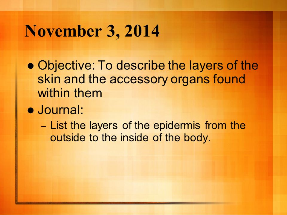 November 3, 2014 Objective: To describe the layers of the skin and the accessory organs found within them Journal: – List the layers of the epidermis from the outside to the inside of the body.