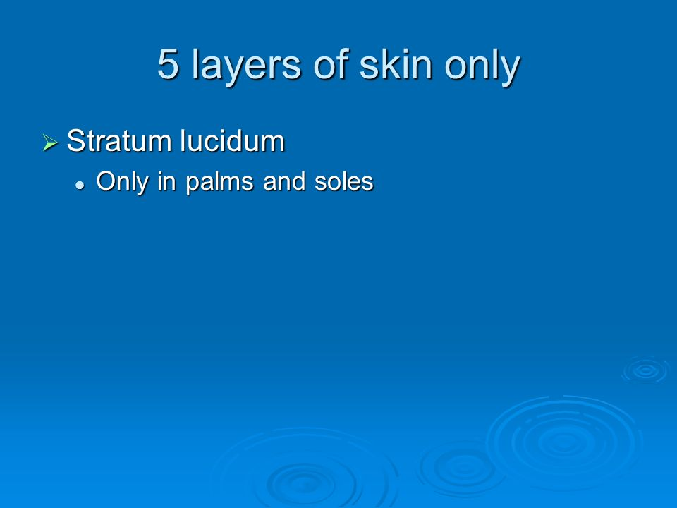 5 layers of skin only  Stratum lucidum Only in palms and soles Only in palms and soles