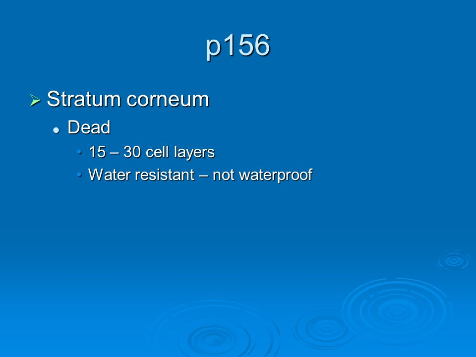p156  Stratum corneum Dead Dead 15 – 30 cell layers15 – 30 cell layers Water resistant – not waterproofWater resistant – not waterproof