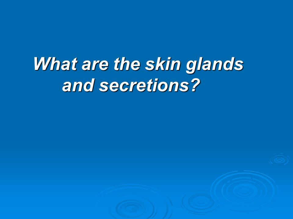 What are the skin glands and secretions