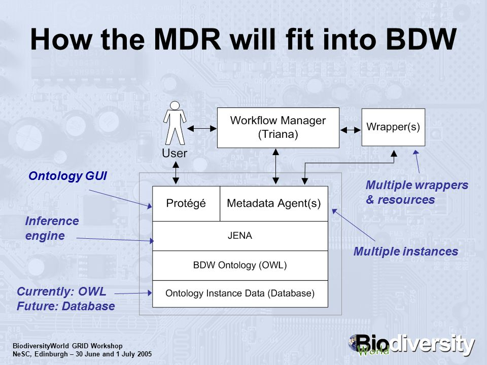 BiodiversityWorld GRID Workshop NeSC, Edinburgh – 30 June and 1 July 2005 How the MDR will fit into BDW Inference engine Ontology GUI Currently: OWL Future: Database Multiple instances Multiple wrappers & resources