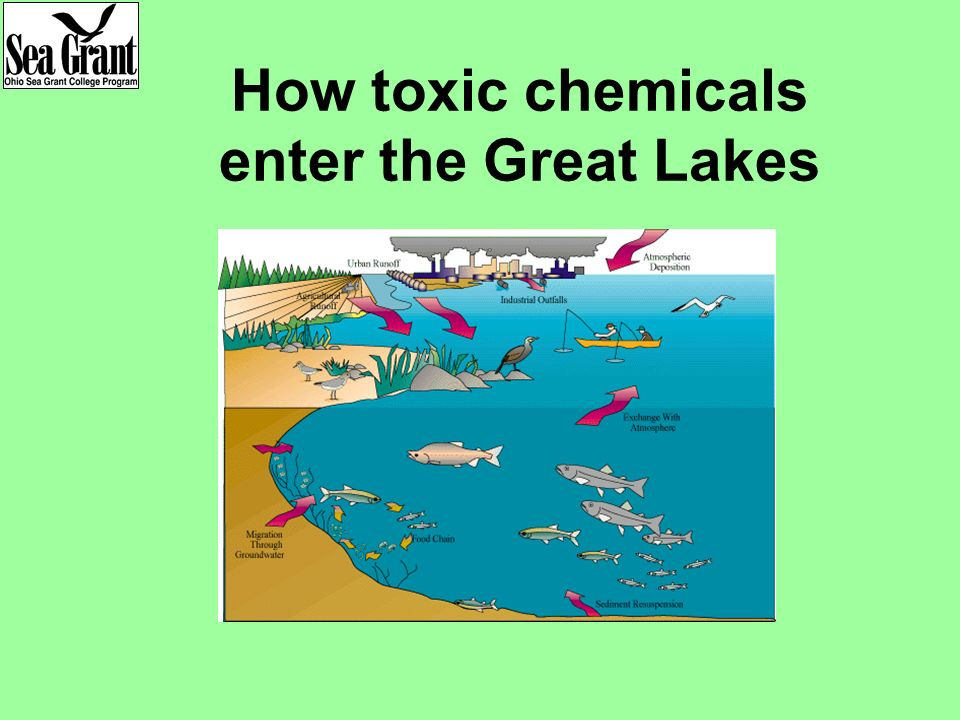 How toxic chemicals enter the Great Lakes