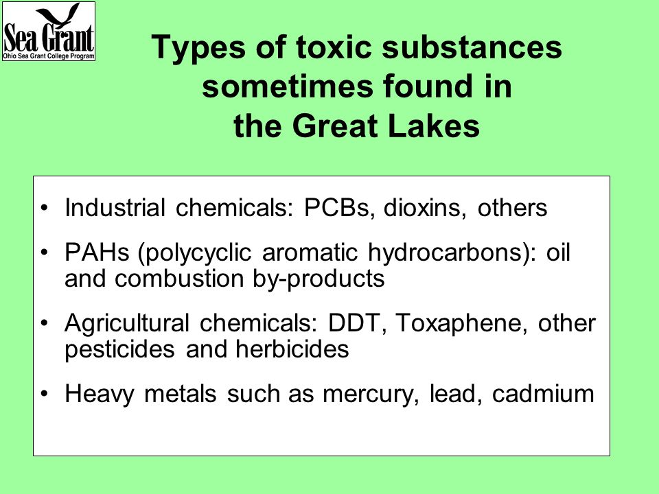 Types of toxic substances sometimes found in the Great Lakes Industrial chemicals: PCBs, dioxins, others PAHs (polycyclic aromatic hydrocarbons): oil and combustion by-products Agricultural chemicals: DDT, Toxaphene, other pesticides and herbicides Heavy metals such as mercury, lead, cadmium