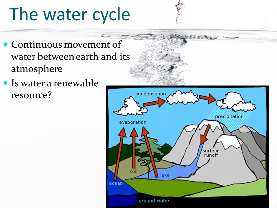 Two kinds Salt water Freshwater We can only live a few days without water, but we can live a month without food