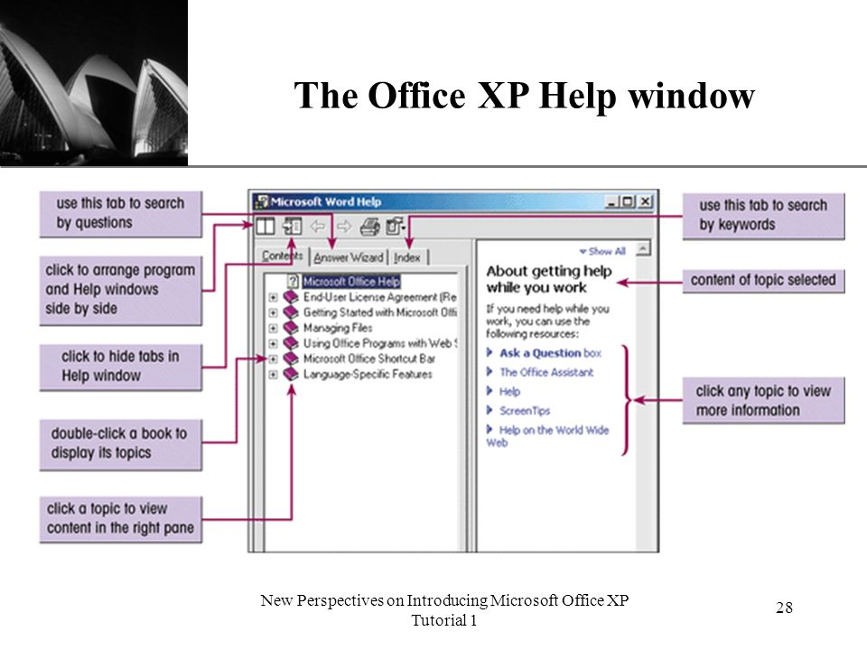 XP New Perspectives on Introducing Microsoft Office XP Tutorial 1 28 The Office XP Help window