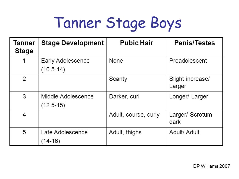 stages of male puberty in order