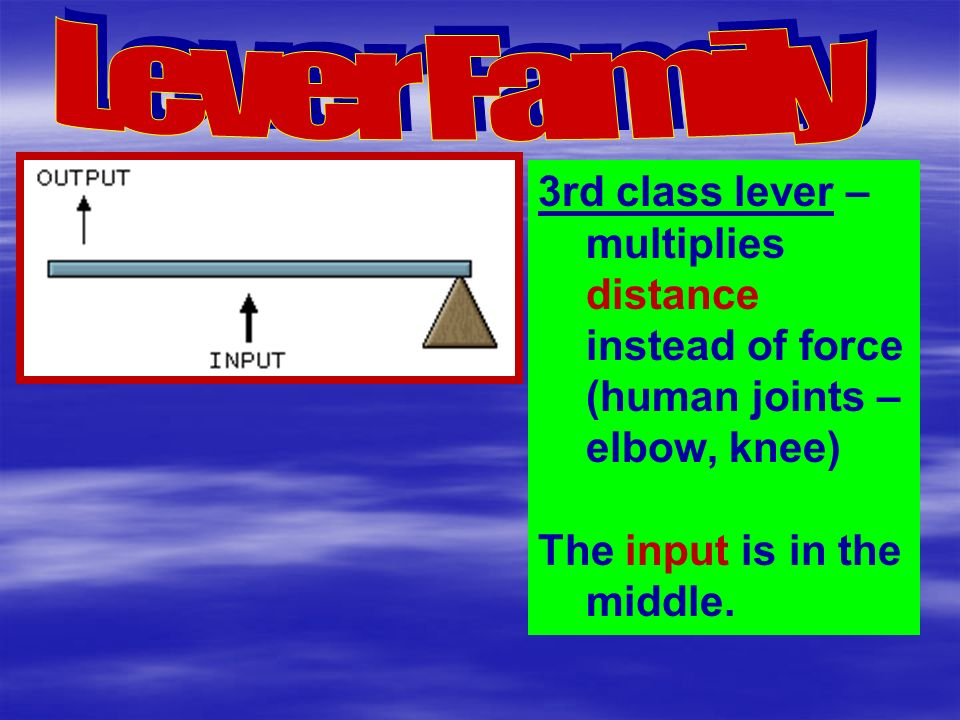 3rd class lever – multiplies distance instead of force (human joints – elbow, knee) The input is in the middle.