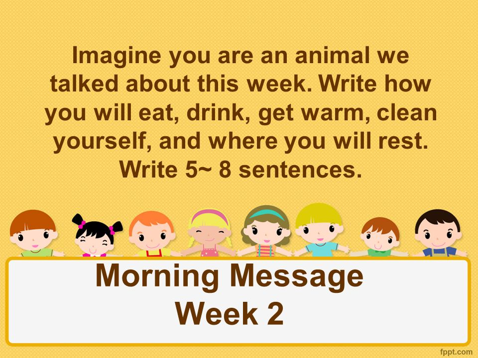 Morning Message Week 2 Imagine you are an animal we talked about this week.