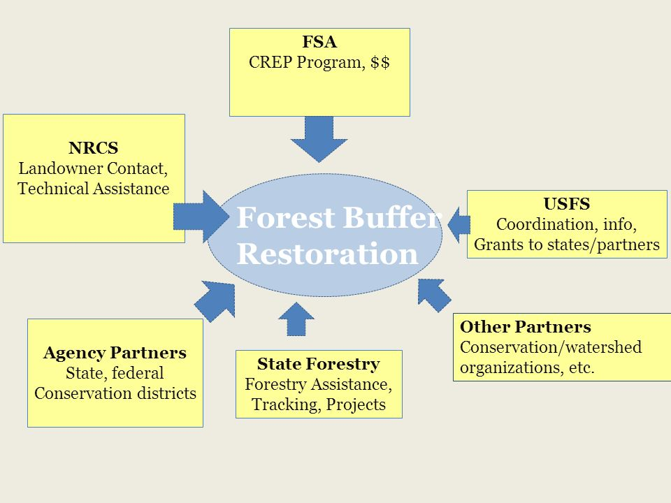 NRCS Landowner Contact, Technical Assistance State Forestry Forestry Assistance, Tracking, Projects FSA CREP Program, $$ USFS Coordination, info, Grants to states/partners Forest Buffer Restoration Agency Partners State, federal Conservation districts Other Partners Conservation/watershed organizations, etc.