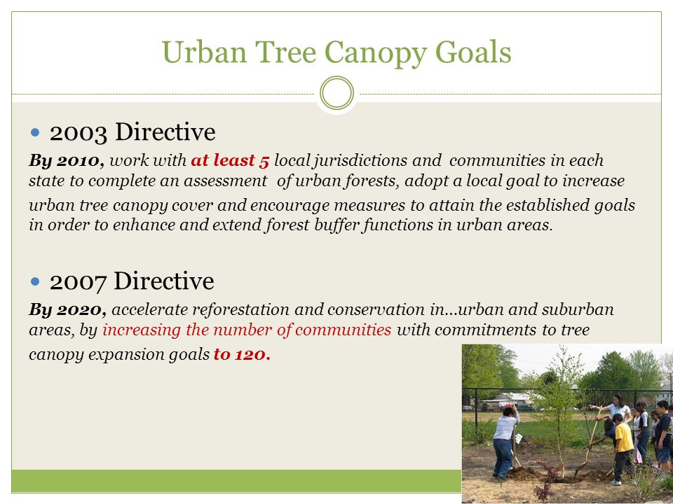 Urban Tree Canopy Goals 2003 Directive By 2010, work with at least 5 local jurisdictions and communities in each state to complete an assessment of urban forests, adopt a local goal to increase urban tree canopy cover and encourage measures to attain the established goals in order to enhance and extend forest buffer functions in urban areas.