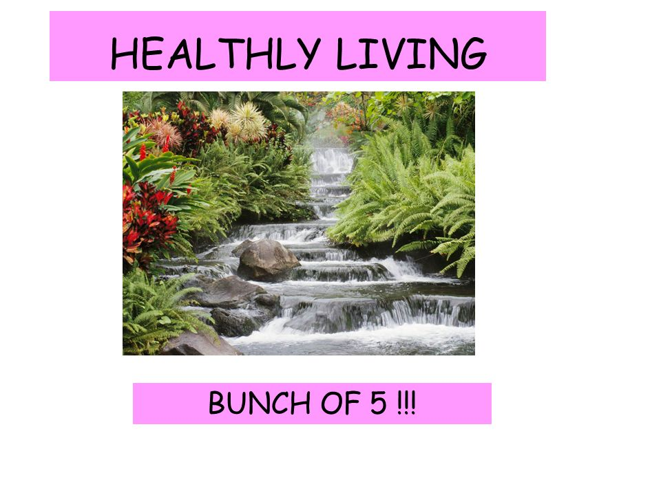 healthly living bunch of 5 what maths can be found in the