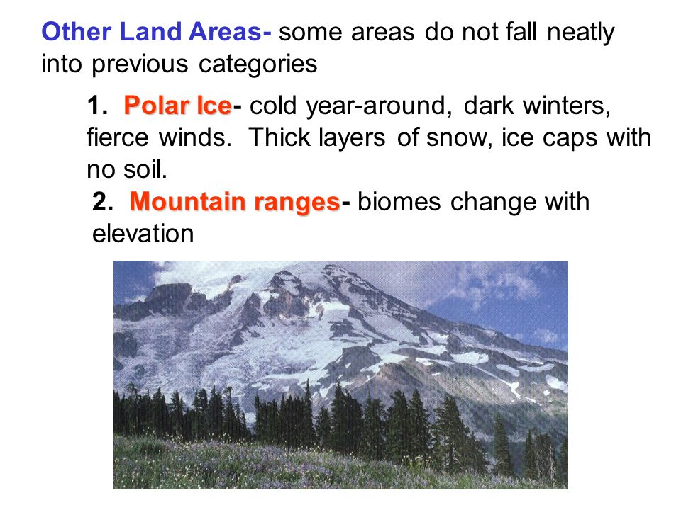 Other Land Areas- some areas do not fall neatly into previous categories Polar Ice 1.