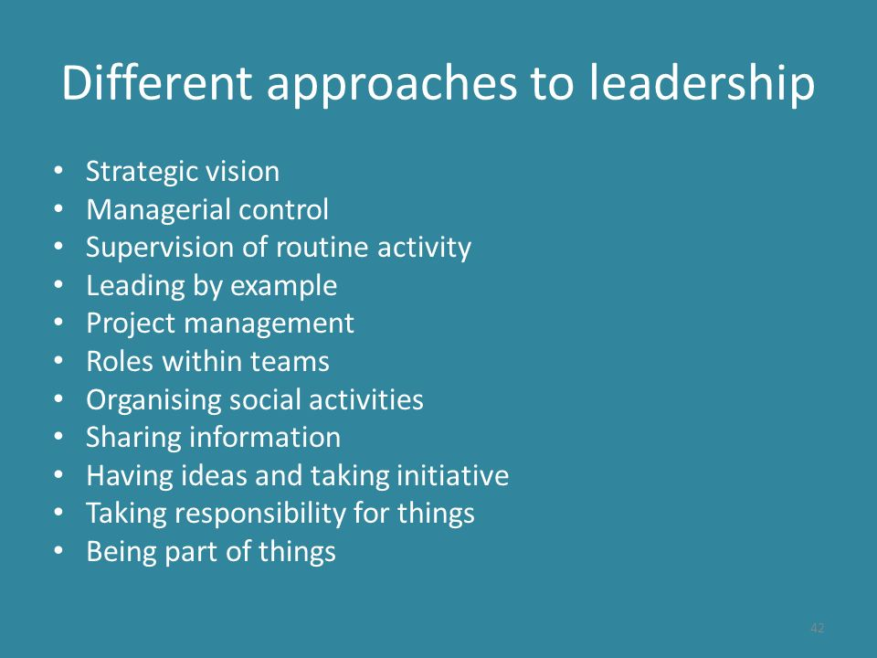 Different approaches to leadership Strategic vision Managerial control Supervision of routine activity Leading by example Project management Roles within teams Organising social activities Sharing information Having ideas and taking initiative Taking responsibility for things Being part of things 42