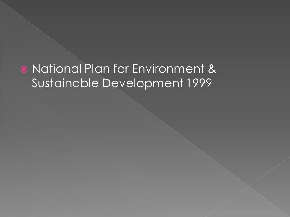  National Plan for Environment & Sustainable Development 1999