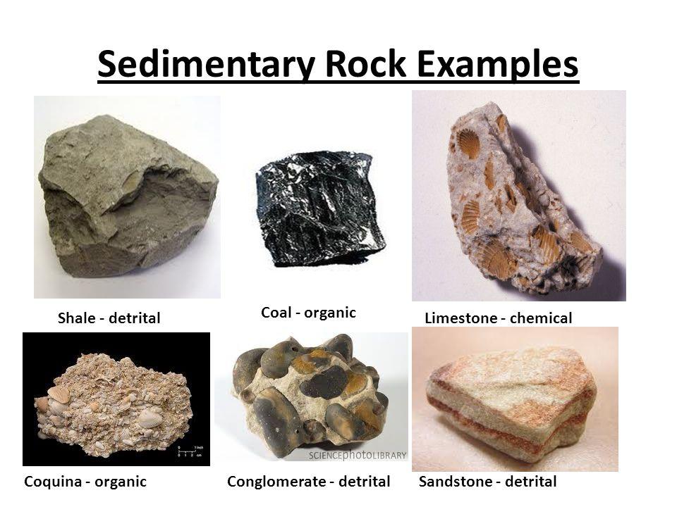 Sedimentary rocks. Ppt video online download.