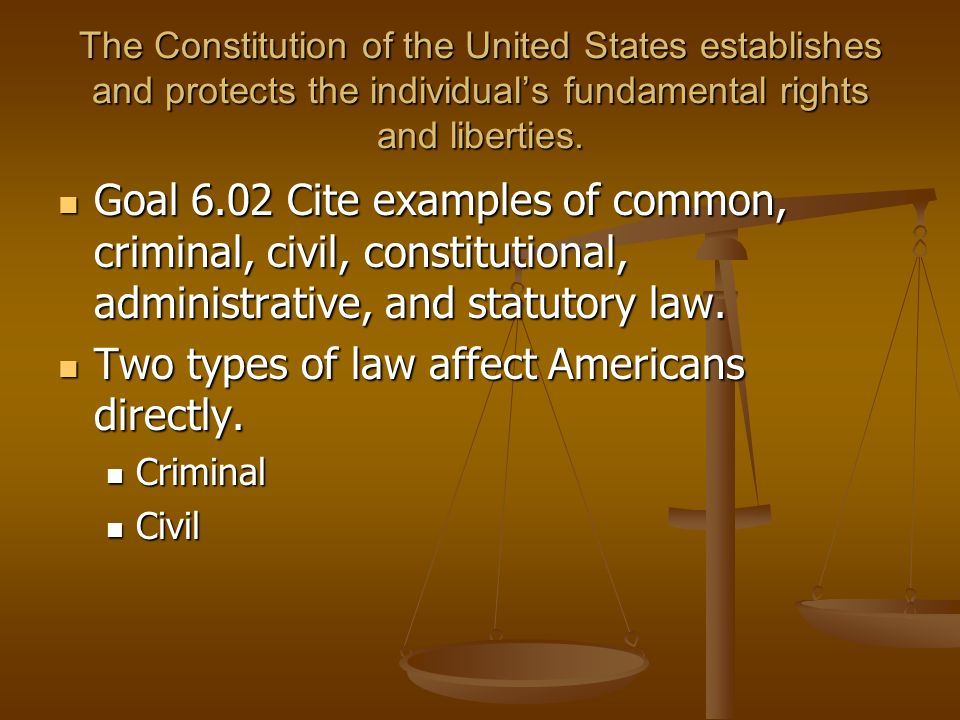6. 01 trace the development of law in american society laws are set.