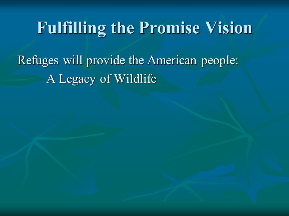 Fulfilling the Promise Vision Refuges will provide the American people: A Legacy of Wildlife