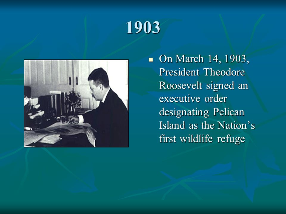 1903 On March 14, 1903, President Theodore Roosevelt signed an executive order designating Pelican Island as the Nation's first wildlife refuge On March 14, 1903, President Theodore Roosevelt signed an executive order designating Pelican Island as the Nation's first wildlife refuge
