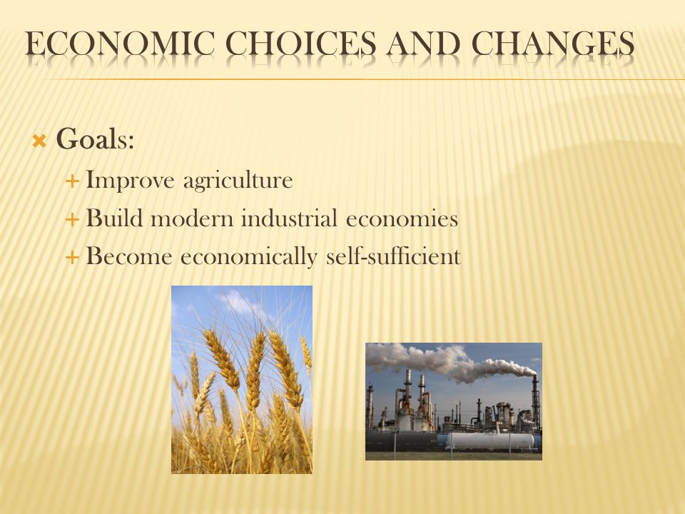  Goals:  Improve agriculture  Build modern industrial economies  Become economically self-sufficient