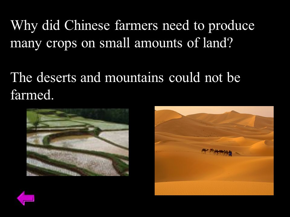 Why did Chinese farmers need to produce many crops on small amounts of land.