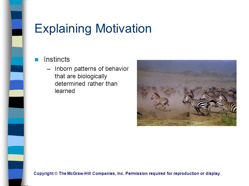 Motivation The factors that direct and energize the behavior of humans and other organisms