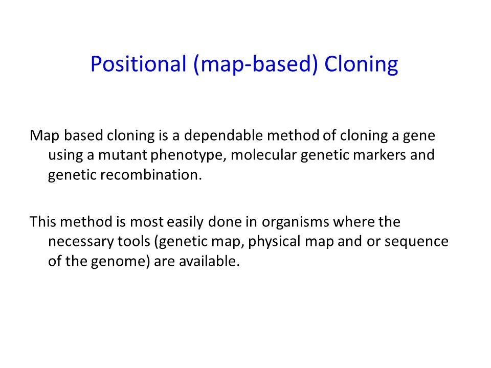 Using mutants to clone genes Objectives 1. What is ... on homozygous definition, cell definition, allele definition, hybrid definition, rna definition, genotype definition, autosomes definition, recessive definition, homologous definition, crossing over definition, transcription definition, genome definition, heredity definition, chromosomes definition, offspring definition, mutation definition, genetics definition, nitrogen base definition, trait definition,