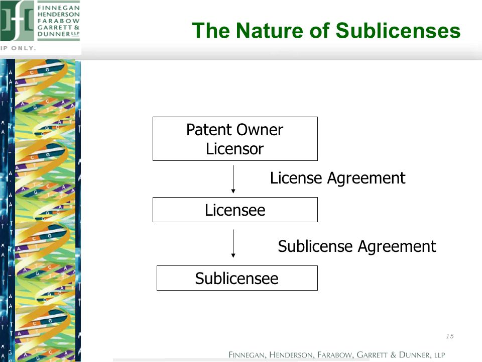 2004 Patent And Know How Licensing The Essential Ip Package D