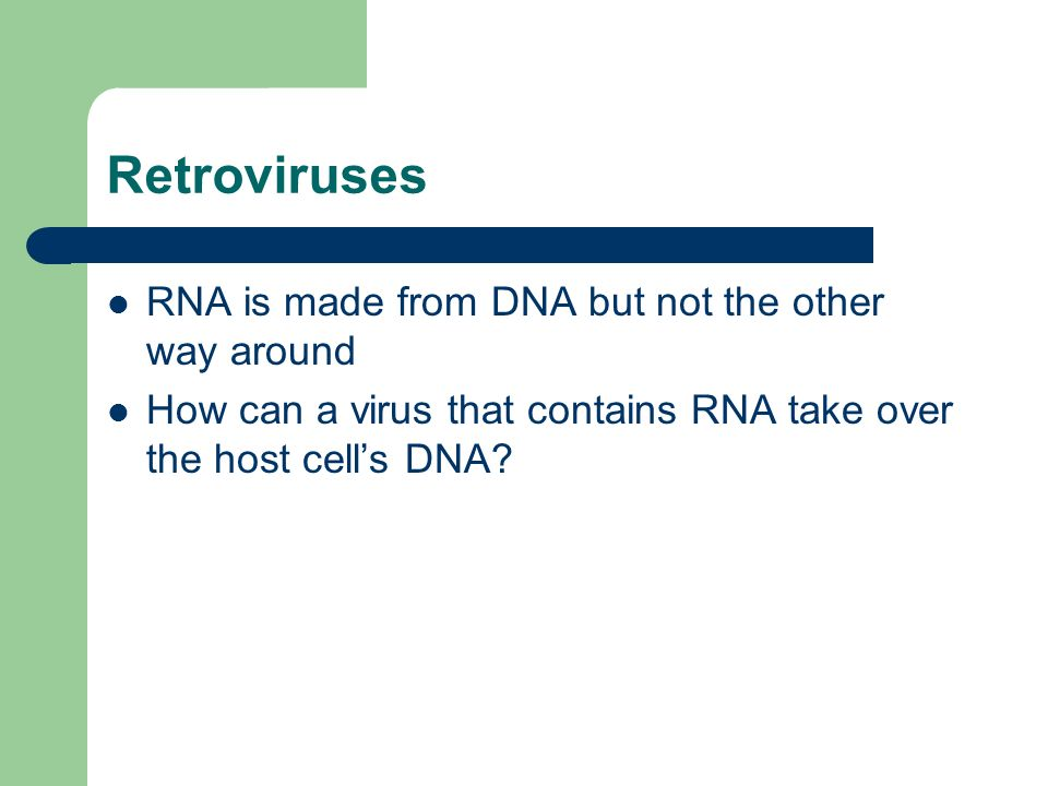 Retroviruses RNA is made from DNA but not the other way around How can a virus that contains RNA take over the host cell's DNA