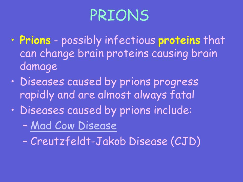 PRIONS Prions - possibly infectious proteins that can change brain proteins causing brain damage Diseases caused by prions progress rapidly and are almost always fatal Diseases caused by prions include: –Mad Cow DiseaseMad Cow Disease –Creutzfeldt-Jakob Disease (CJD)