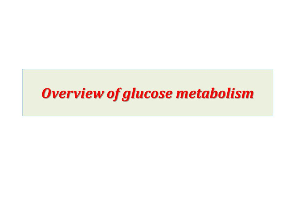Overview of glucose metabolism