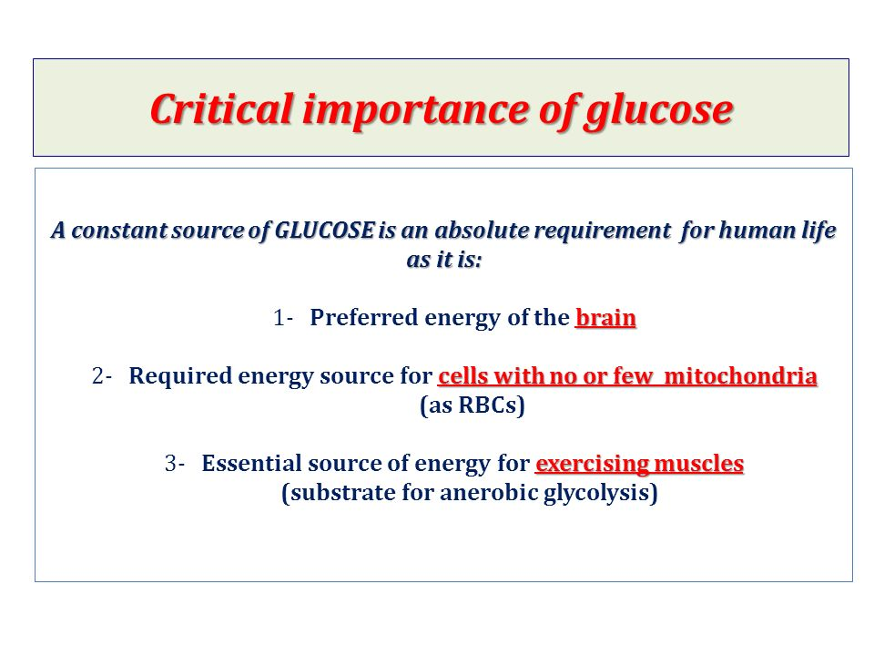 A constant source of GLUCOSE is an absolute requirement for human life as it is: brain cells with no or few mitochondria exercising muscles A constant source of GLUCOSE is an absolute requirement for human life as it is: 1- Preferred energy of the brain 2- Required energy source for cells with no or few mitochondria (as RBCs) 3- Essential source of energy for exercising muscles (substrate for anerobic glycolysis) Critical importance of glucose