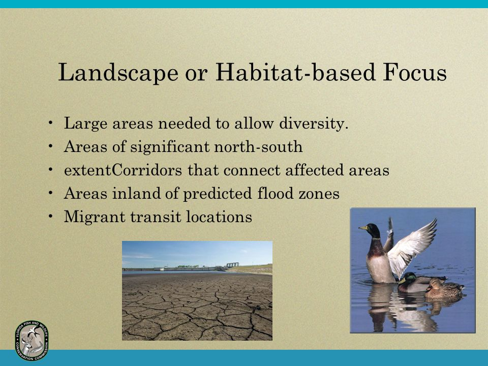 Landscape or Habitat-based Focus Large areas needed to allow diversity.