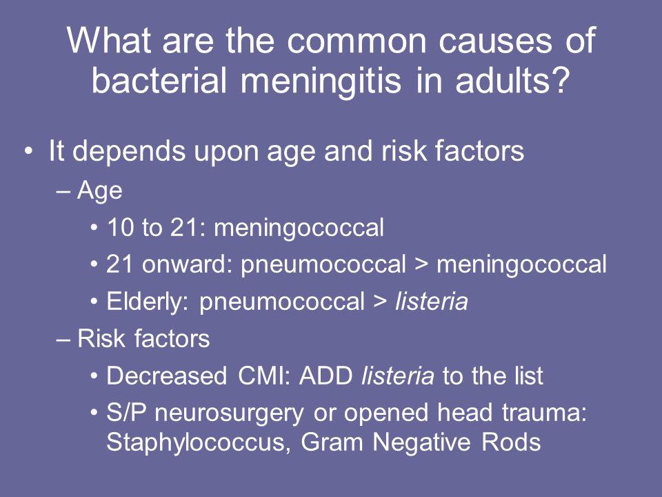 Bacterial meningitis in adults — img 5