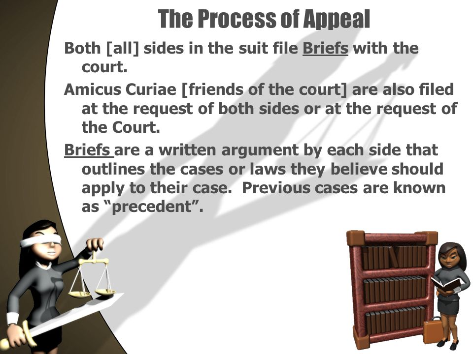 The Process of Appeal Both [all] sides in the suit file Briefs with the court.