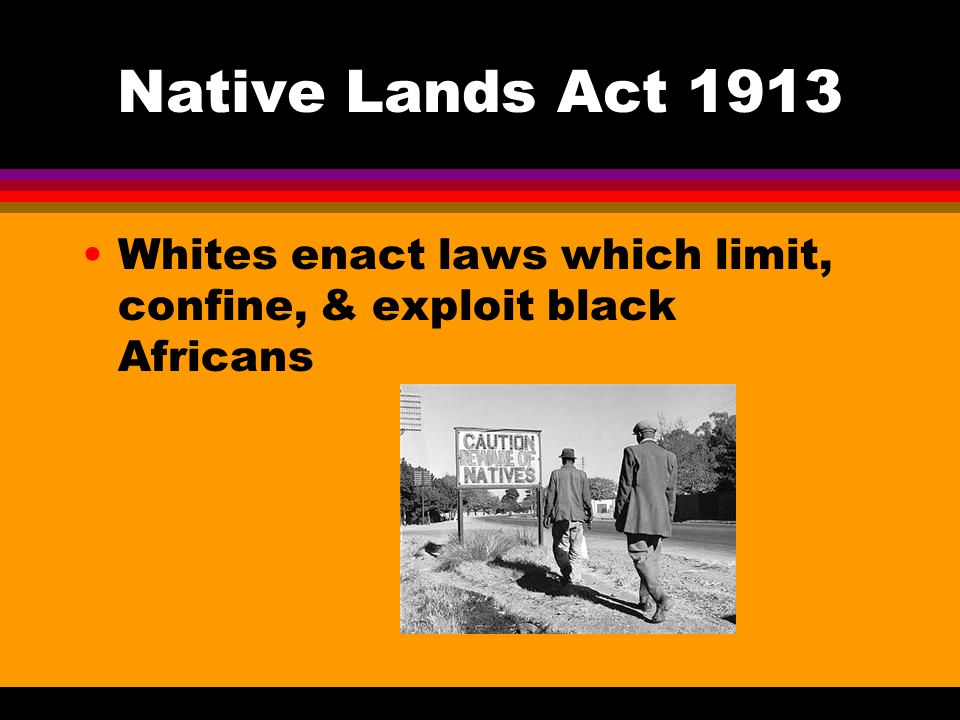 Native Lands Act 1913 Whites enact laws which limit, confine, & exploit black Africans