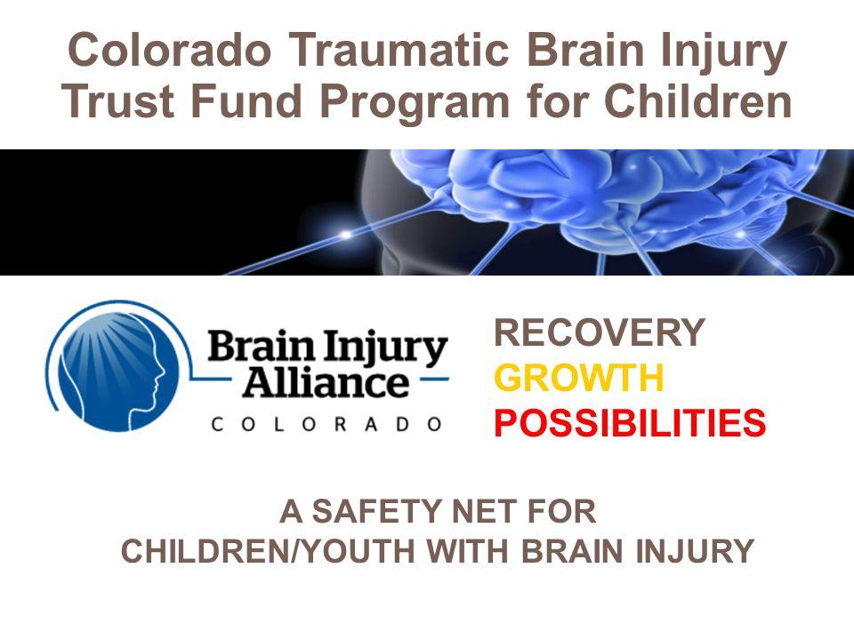 colorado traumatic brain injury trust fund program for children