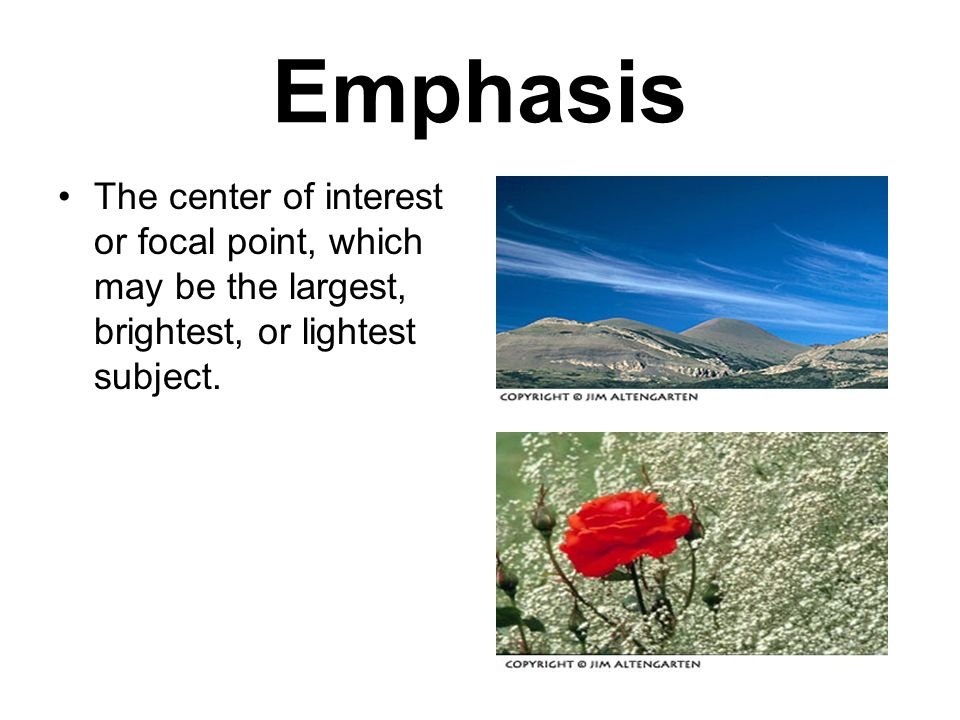 Emphasis The center of interest or focal point, which may be the largest, brightest, or lightest subject.