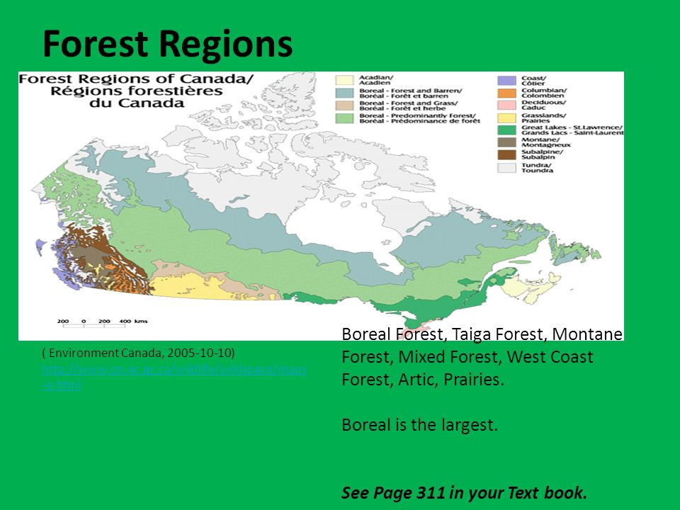 Forests In Canada Forests Cover 42 Of Canada 4 187 820