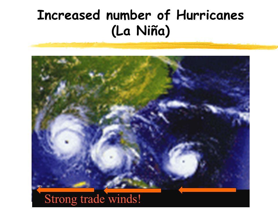 Increased number of Hurricanes (La Niña) Strong trade winds!