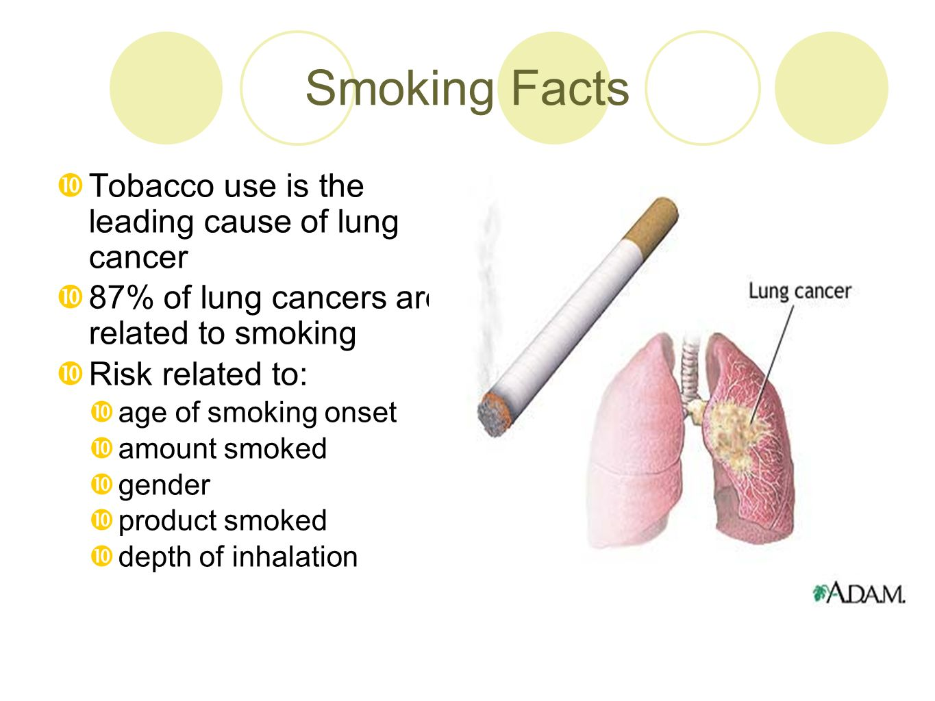 Smoking Facts  Tobacco use is the leading cause of lung cancer  87% of lung cancers are related to smoking  Risk related to:  age of smoking onset  amount smoked  gender  product smoked  depth of inhalation