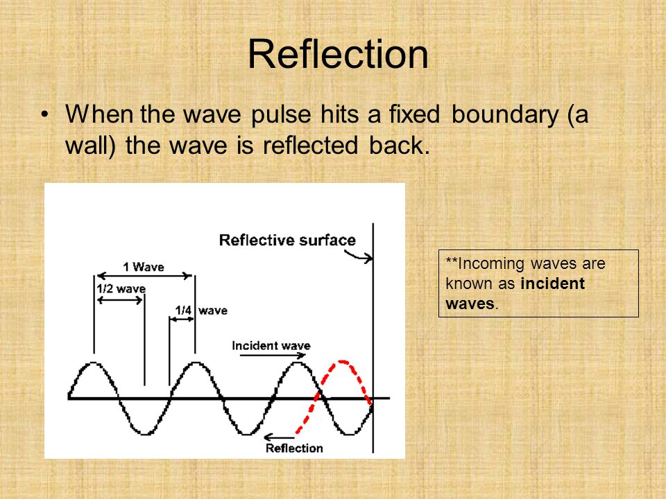 Reflection When the wave pulse hits a fixed boundary (a wall) the wave is reflected back.